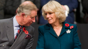 Royals with two poppies